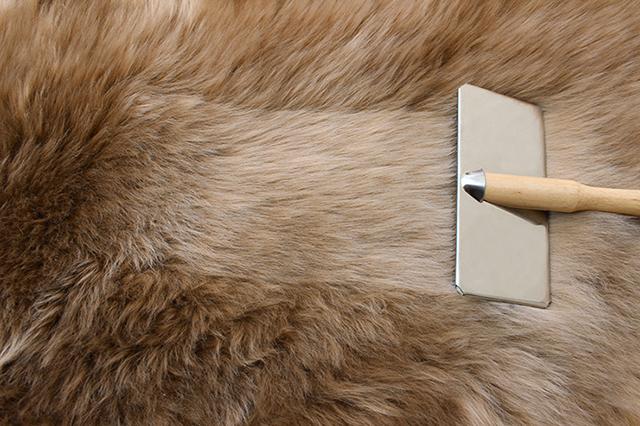 毛の向きによるムートンの色の見え方